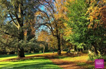 Parco Magni